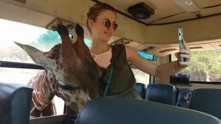 Selfie avec la girafe